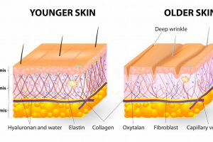 Bạn đã biết bổ sung collagen tái tạo da như thế nào chưa?