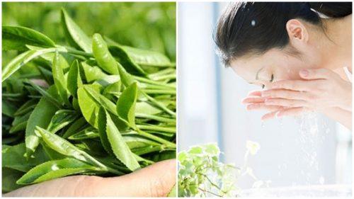 Review rửa mặt bằng lá trà xanh có công dụng gì với da?